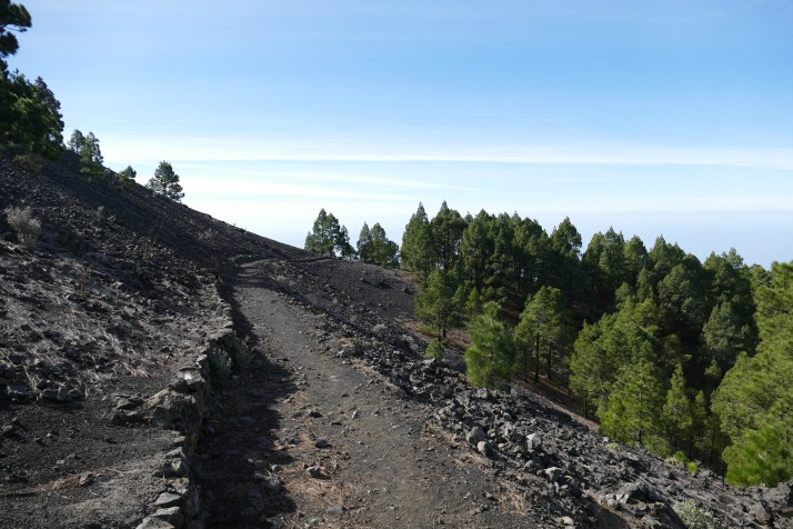 Patikointipolku mustanpuhuvalla muinaisen tulivuoren laavarinteellä. Nyt puut jo kasvavat.
