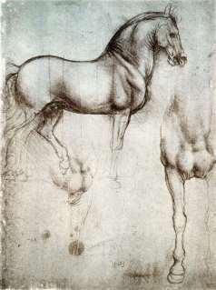 da vinci study of horses