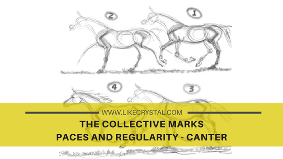COLLECTIVE MARKS – PACES AND REGULARITY – CANTER