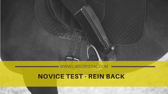 Novice Test – Rein back