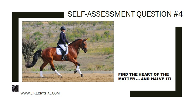 Q4 Is Your Horse Responsive?