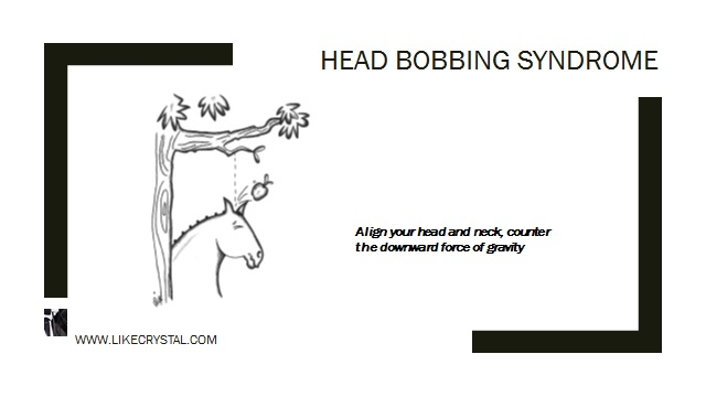 Q11 - Are You Head Bobbing?
