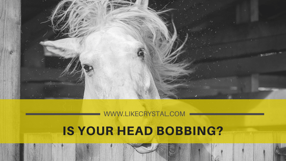 Q11 – Are You Head Bobbing?