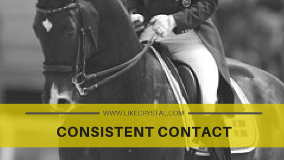 Consistent Contact - The Crystal System Dressage