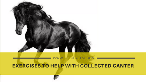 Exercises to help with Collected Canter