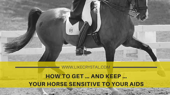 How to get … and keep … your horse sensitive to your aids