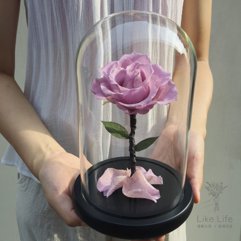 永生花玻璃罩紫色封面