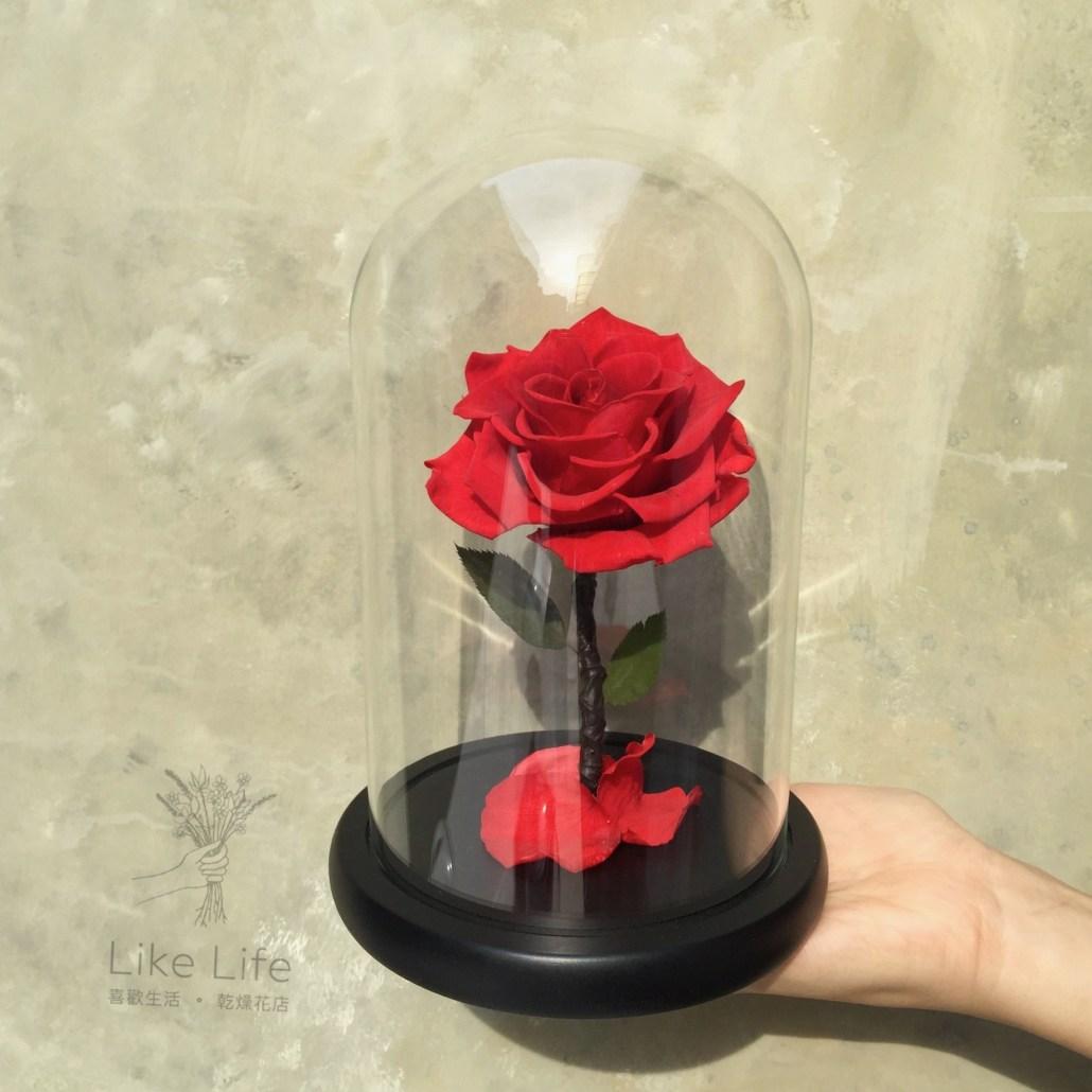 永生玫瑰花玻璃罩手拿,台北永生花推薦,喜歡生活乾燥花店