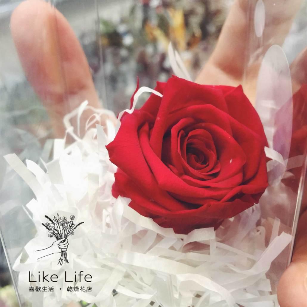 永生玫瑰花紅色,永生花紅色,紅色永生花