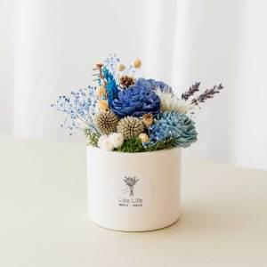 開幕送禮乾燥花盆栽中型藍色首圖,乾燥花盆栽推薦台北