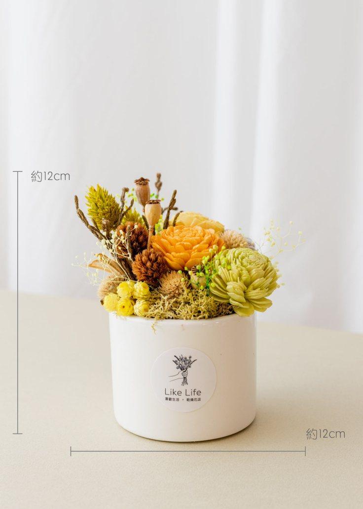 乾燥花開幕盆栽,乾燥花中型開幕盆栽黃色乾燥花盆栽