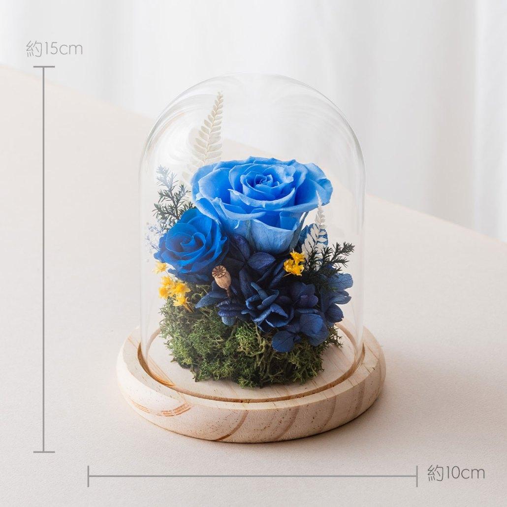 永生花玻璃鐘罩-淺藍色尺寸照片