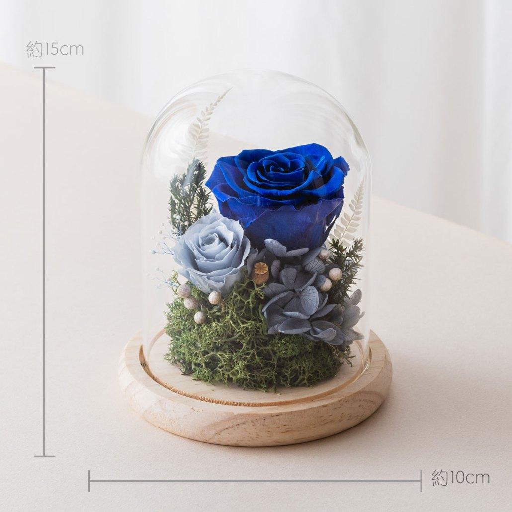永生花玻璃鐘罩-藍色尺寸照片