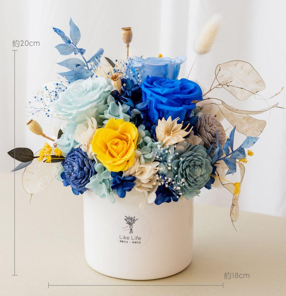 永生花開幕盆栽,藍色永生花盆栽開幕尺寸