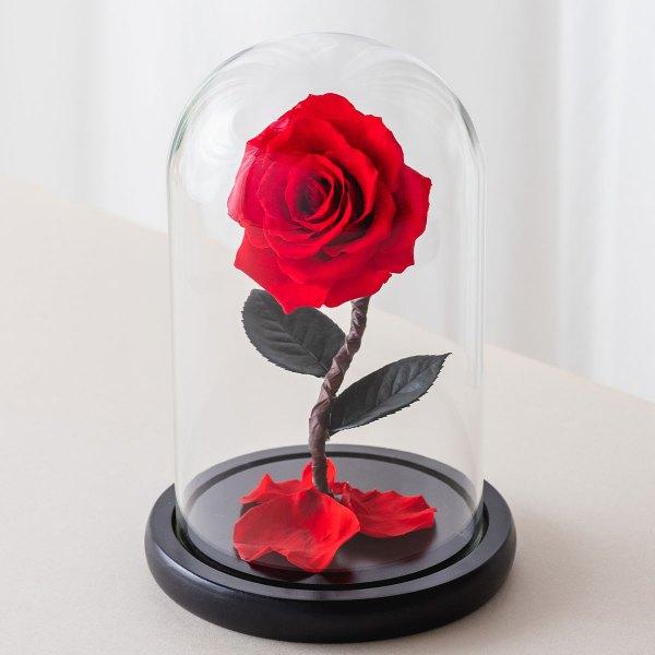 永生花玫瑰,紅色永生花玫瑰正版封面