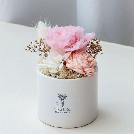 母親節粉色永生花康乃馨正封面-台北喜歡生活乾燥花店