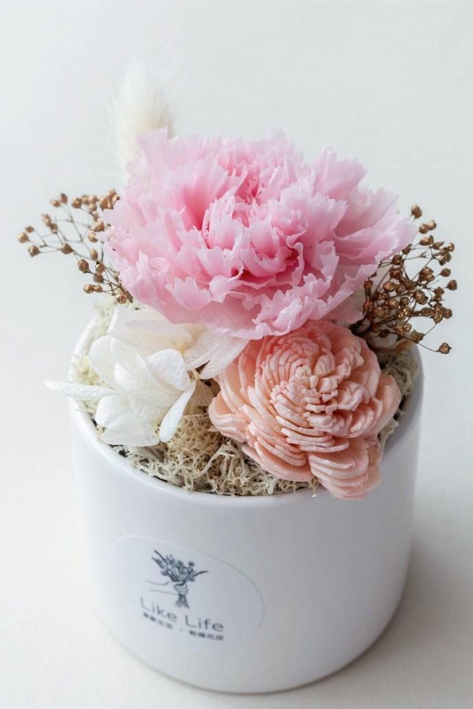 母親節粉色永生花康乃馨盆栽特寫-台北喜歡生活乾燥花店