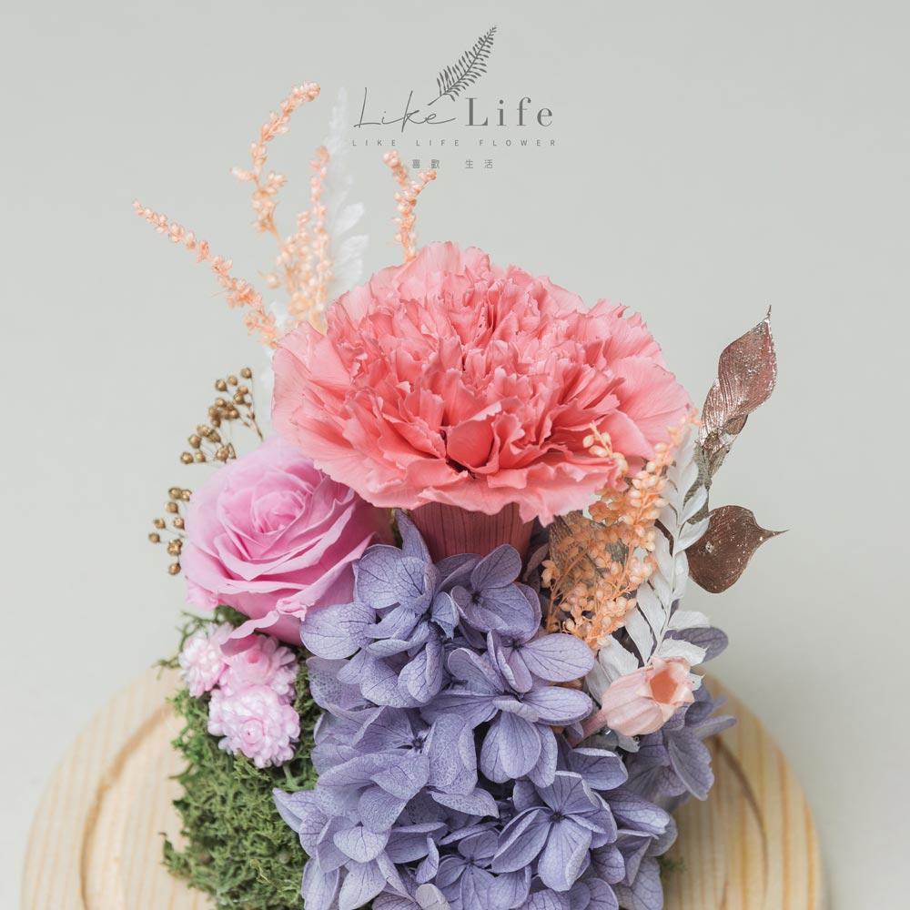 母親節永生花玻璃罩粉色永生花康乃馨特寫