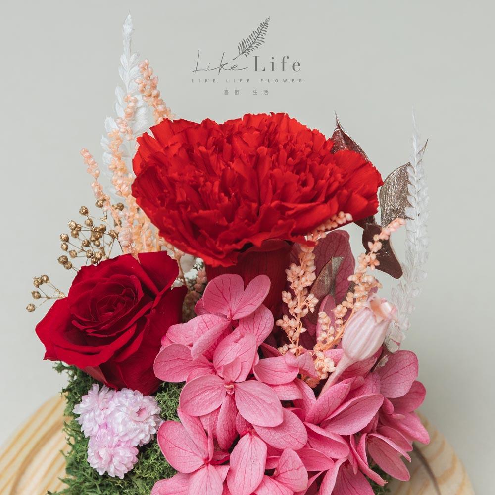 母親節永生花玻璃罩紅色永生花康乃馨特寫