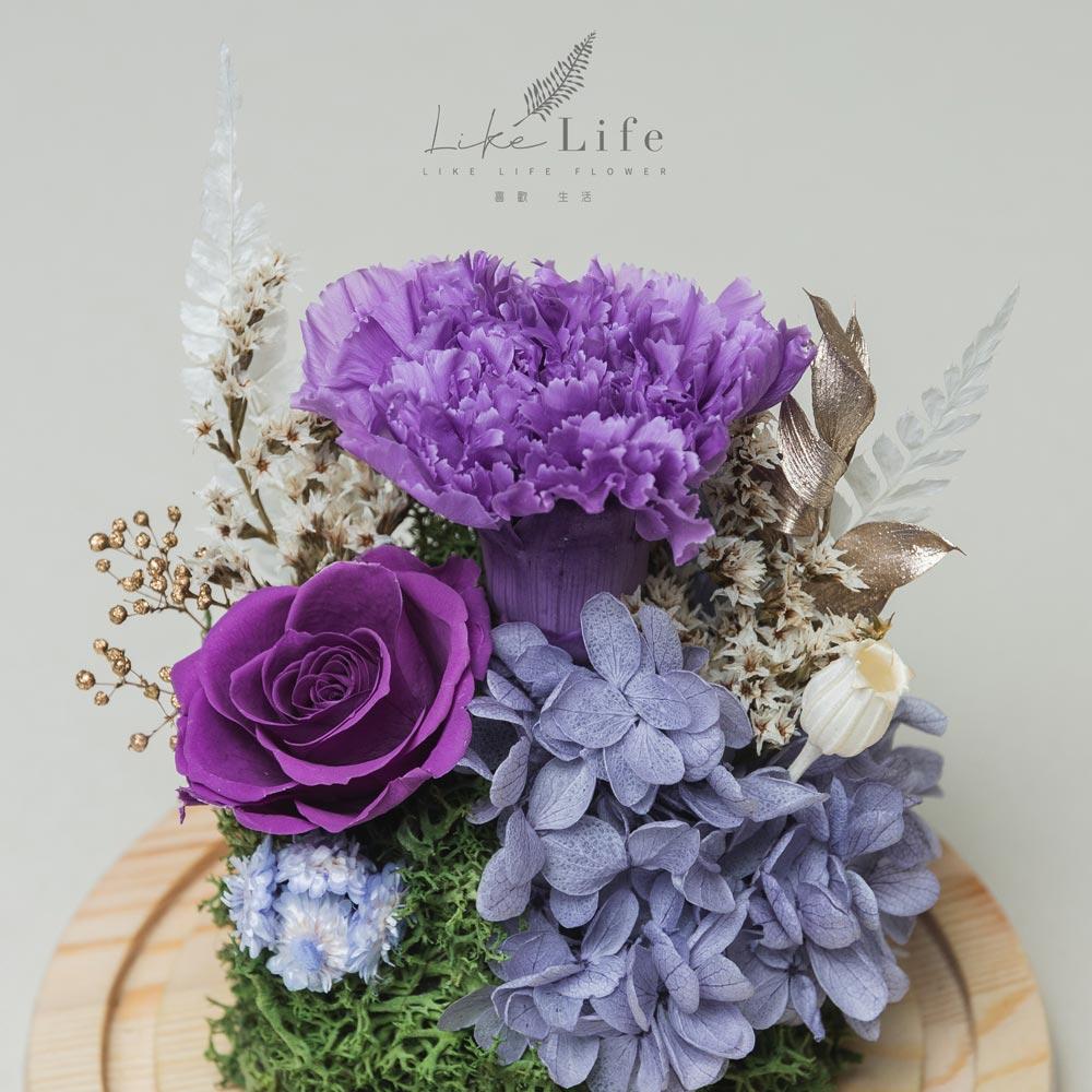 母親節永生花玻璃罩紫色永生花康乃馨特寫