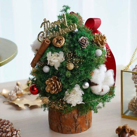 聖誕樹封面木底3