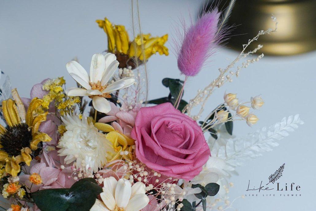 小雛菊永生花盆栽特寫,永生玫瑰花與小雛菊特寫照片