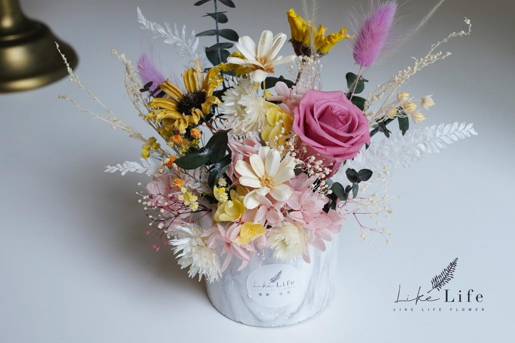 小雛菊永生花盆栽,永生玫瑰花,花藝課程教學-台北喜歡生活乾燥花店