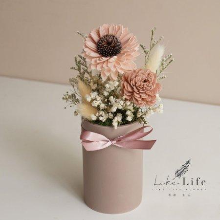 向日葵盆栽材料包粉色向日葵1
