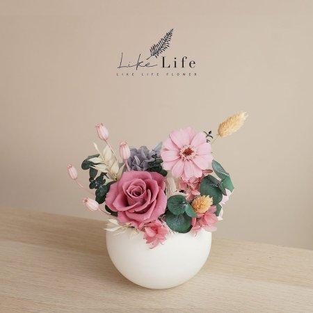 永生花盆栽粉色封面小