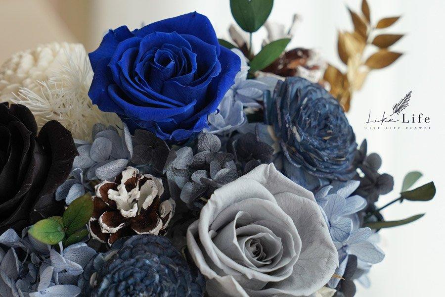永生花盆栽-古典藍色永生花特寫,永生花開幕盆栽