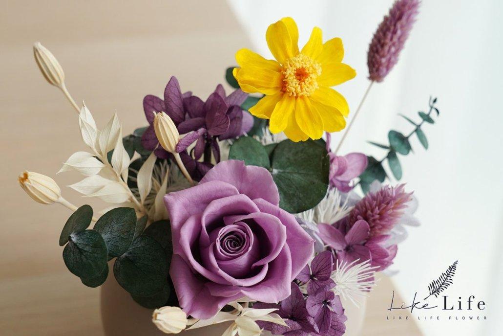 特寫紫色永生花盆栽