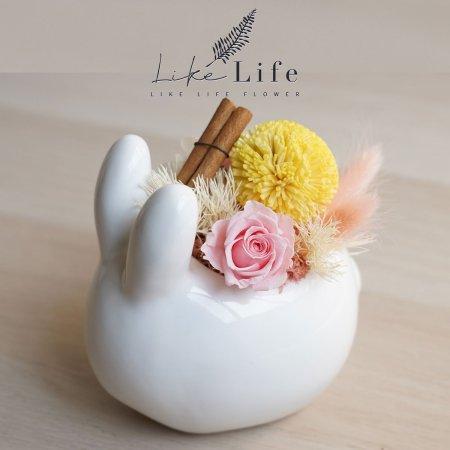中秋節永生花小白兔封面