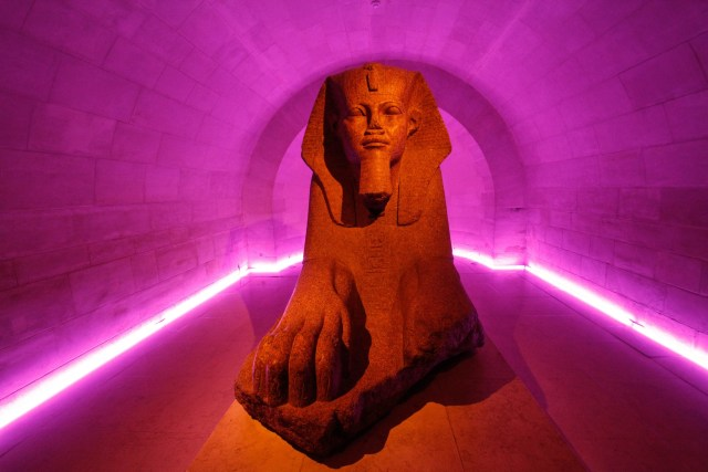 egyptian sphinx in front of neon backdrop