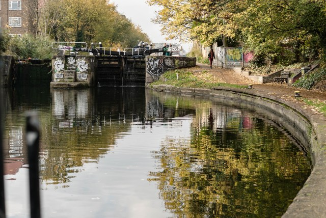 a graffiti covered grey lock in the murky green water which is reflecting the yellow leaves on the trees that line the grey path
