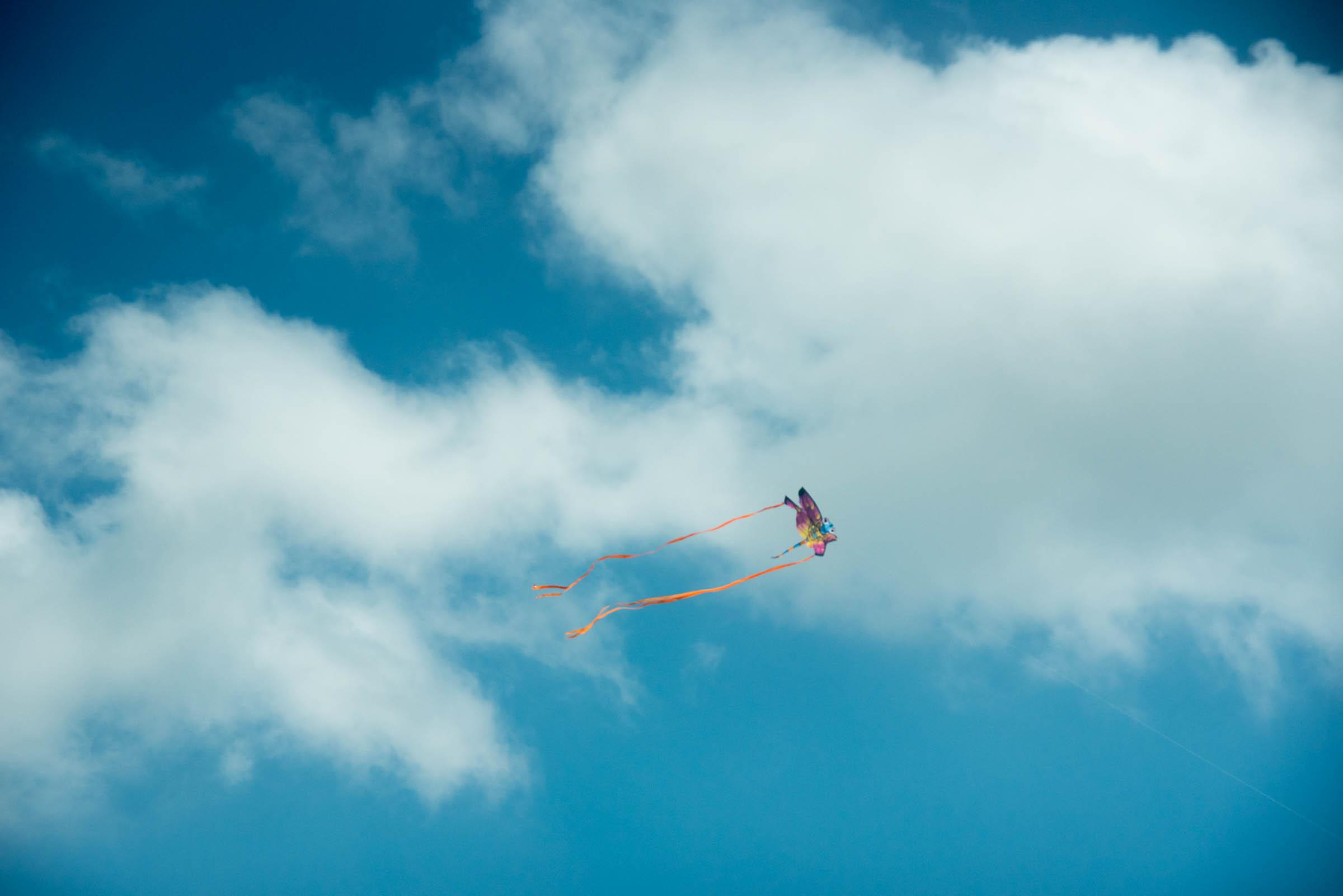 butterfly kite in sky