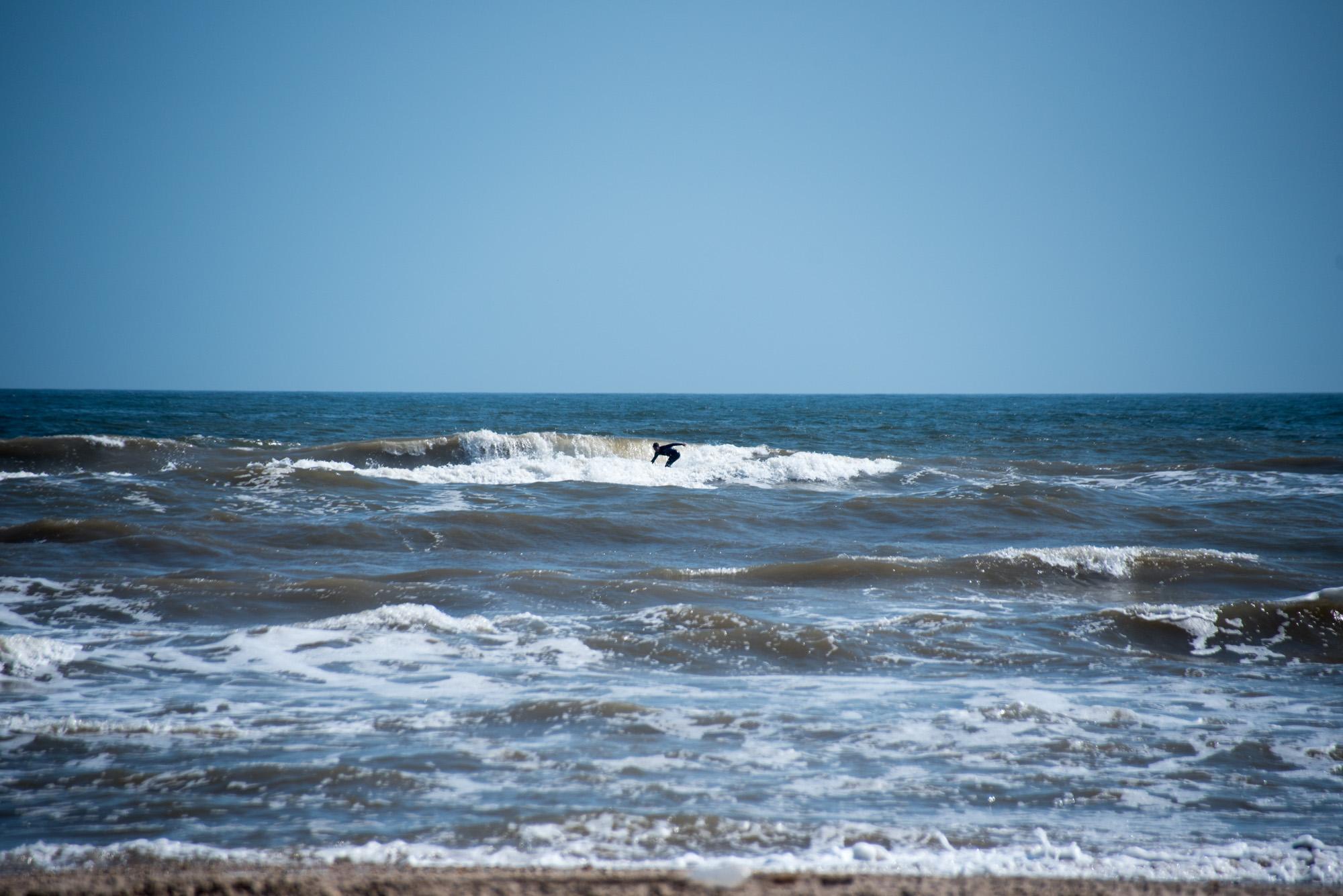 matagorda surf