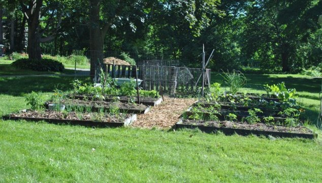 {pretty, happy, funny, real} ~ garden progress and vacuuming old beans