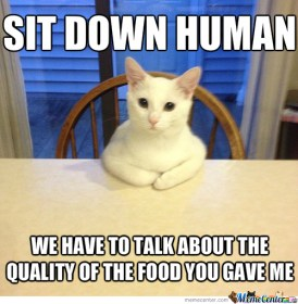 how-my-cat-shows-she-amp-039-s-hungry_o_2395983