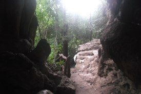 Looking outside the cave