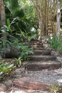 Climb every stair?