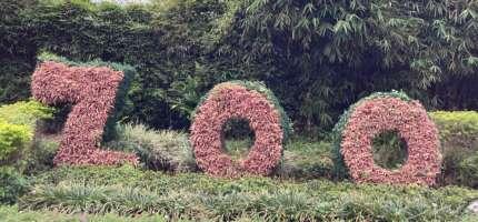 台北木柵親子景點:「台北動物園」路線、門票、地圖、美食、交通全介紹