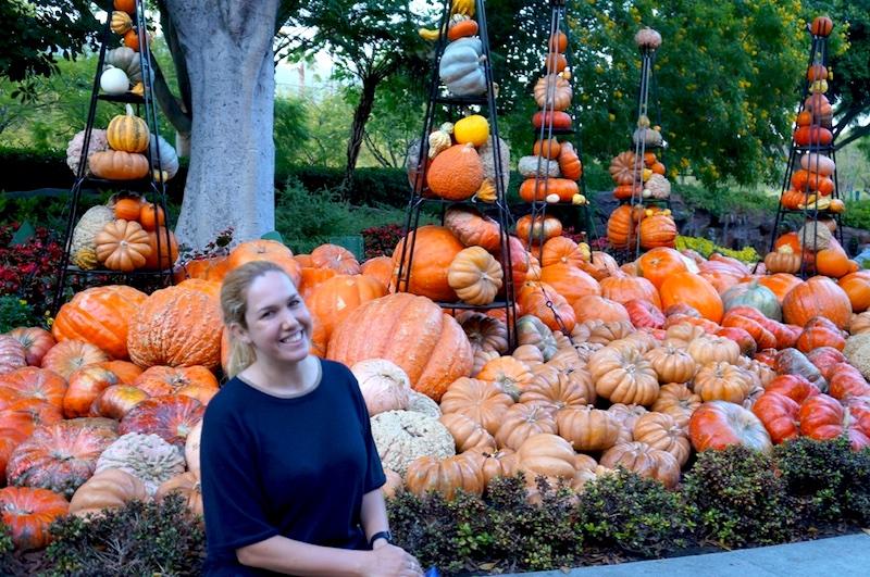 Festa de Halloween na Disney - Downton Disney