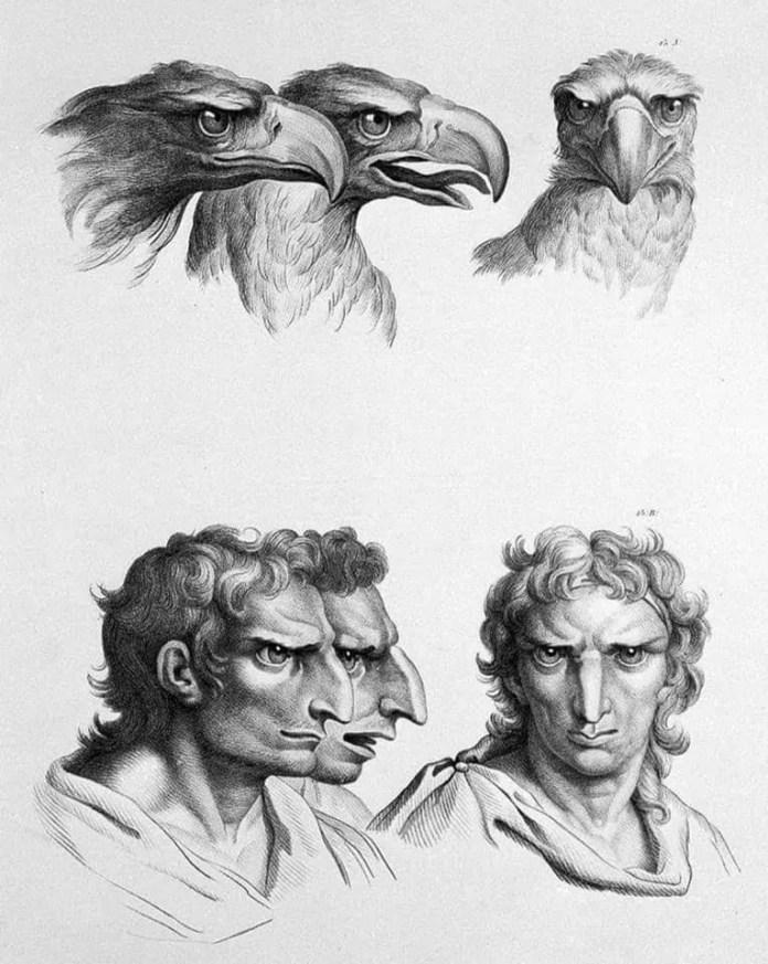 Eagle art resembling a human face