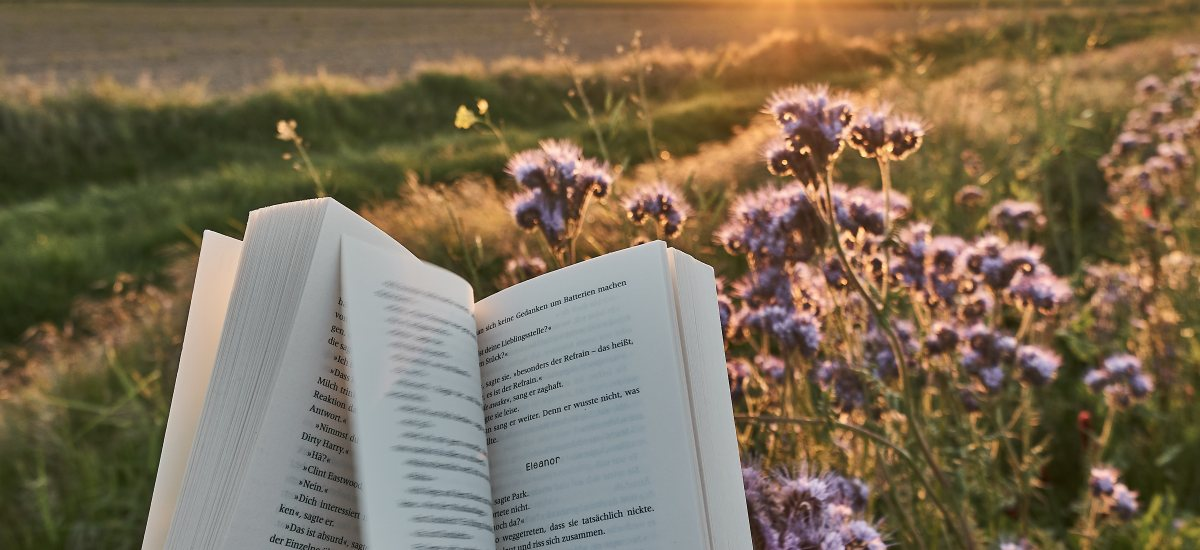 Wie authentisch bin ich als Buchblogger?
