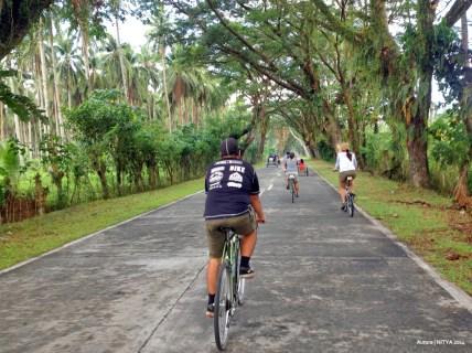Cycling Aurora