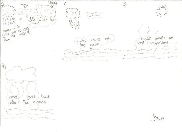water-cycle-5