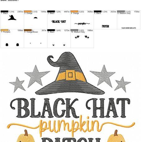 Black Hat pumpkin patch 8×12
