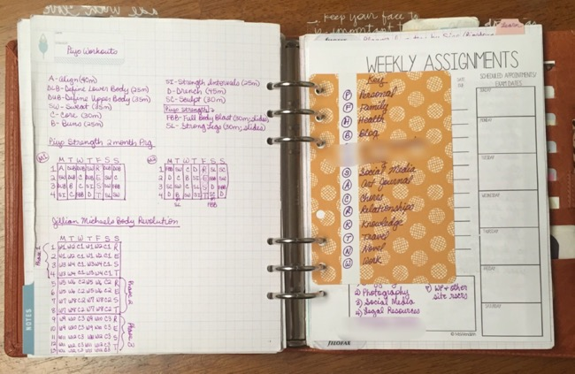 planner, binders, van der spek, vds, planner setup, inkwell press, notes section, custom inserts
