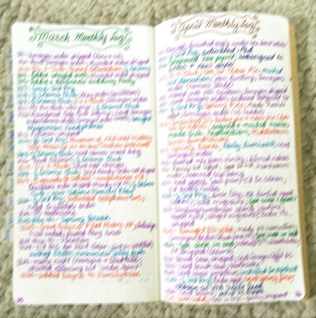 Planners, travelers notebook, bullet journal, one book July, Naked Cow Artist Travelers Notebook, Goulet notebooks, leuttchurm1917