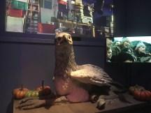 Buckbeak automaton